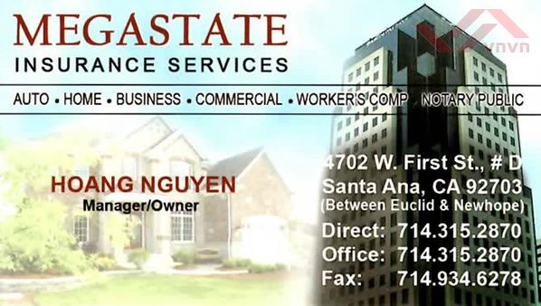 Megastate Insurance & Financial Services - Hoang Nguyen
