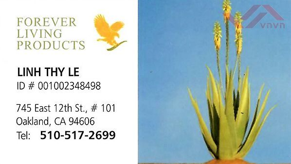Forever Living Product - Linh Thy Le